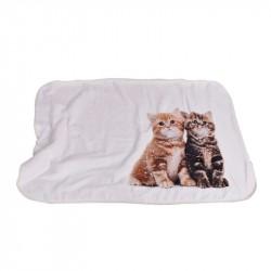Бебешко одеяло двулицево -...